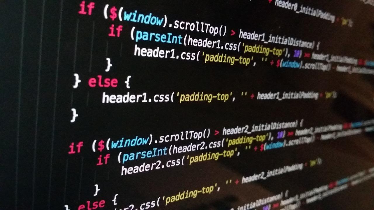 giorno dei programmatori